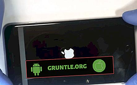 Écran scintillant gris pour iPhone 6 Plus