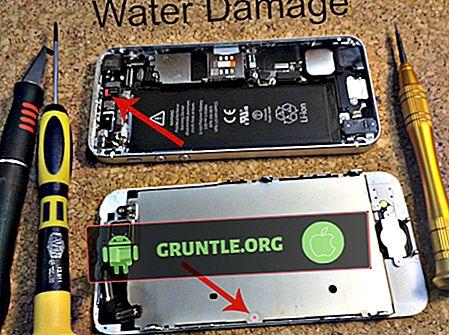 Was tun bei einem wassergeschädigten iPhone SE?